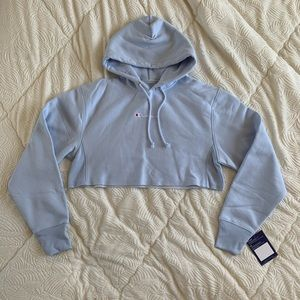 CHAMPION uo exclusive cropped hoodie sweatshirt